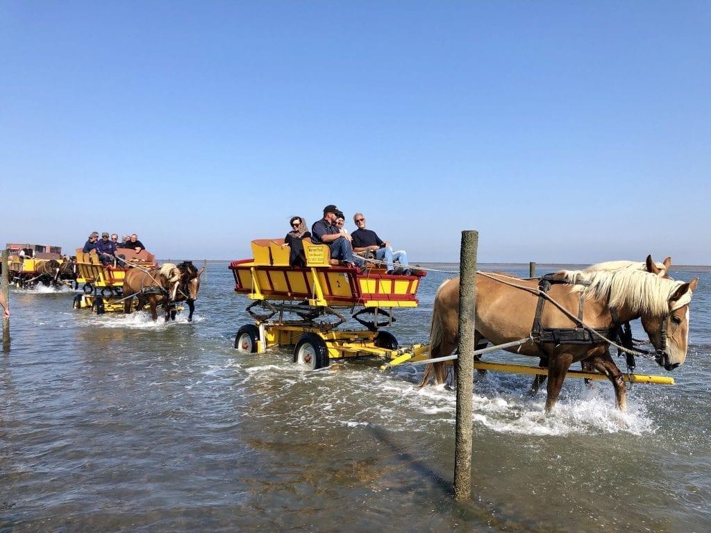 Alternative: Mit dem Wattwagen durchs Wattenmeer nach Neuwerk