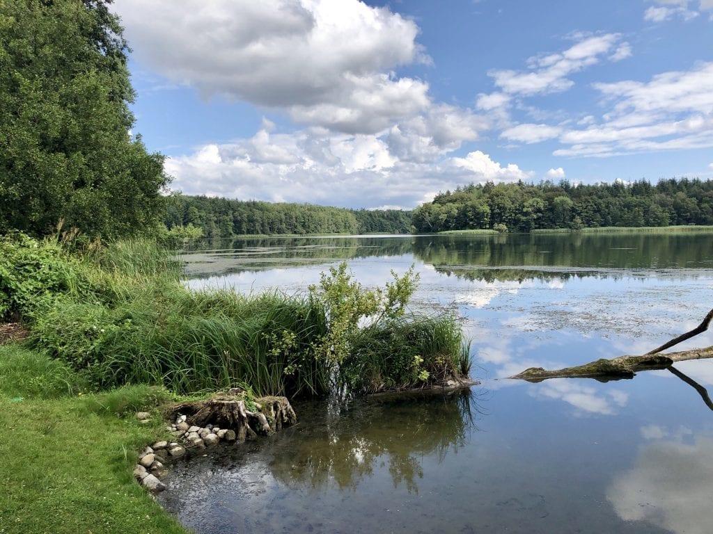 Wandern am Schaalsee - Ufer des Küchensees bei Seedorf