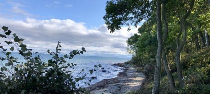 Wandern auf Fehmarn: Von Puttgarden entlang der Ostküste nach Burg