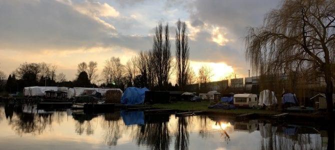 Wandern in Hamburg Wilhelmsburg: Auf dem Elbdeich zur Bunthäuser Spitze
