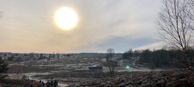Wandern durch die Lüneburger Heide: Auf dem Heidschnuckenweg ins Herz der Heide