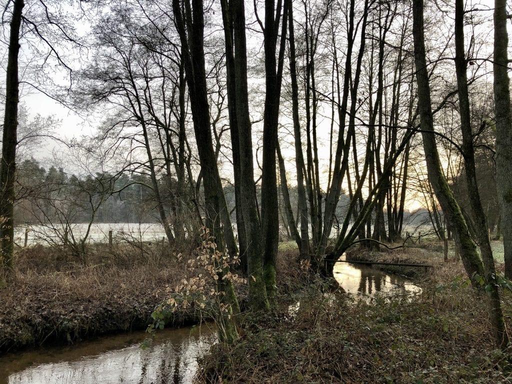 An der Schmalen Aue unweit von Egestorf