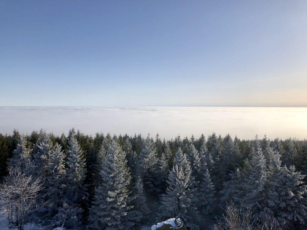 Ausblick vom Aussichtsturm der Hanskühnenburg nach Süden