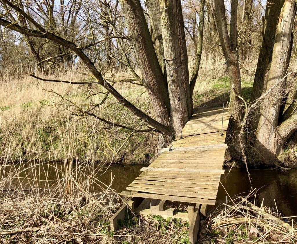 Über diese kleine Brücke kann man die Wiese südlich des Waldes erkunden