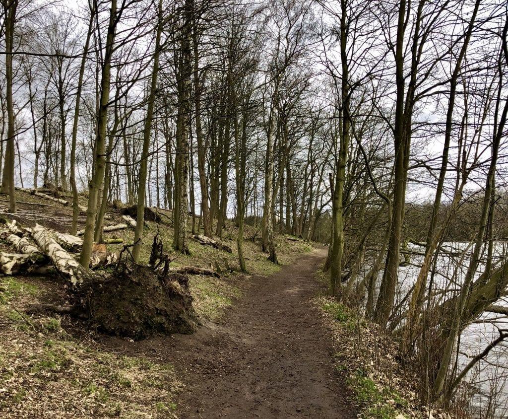 Uferweg an der Ostseite des Öjendorfer Sees