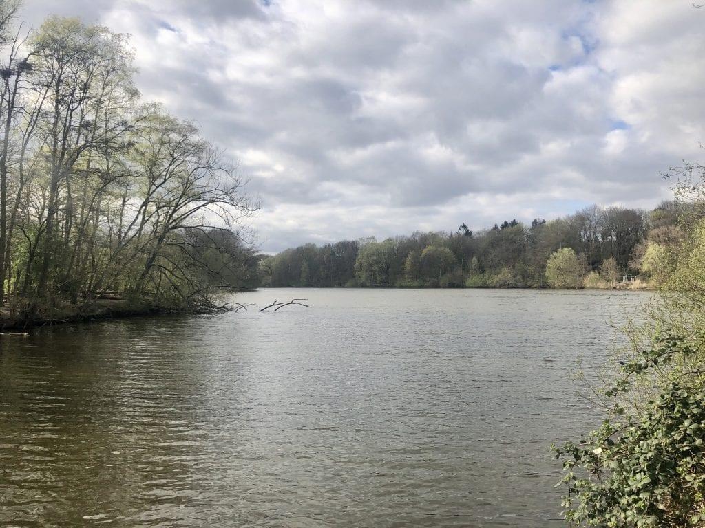 Spazieren gehen in Hamburg - Blick über den idyllischen Bramfelder See