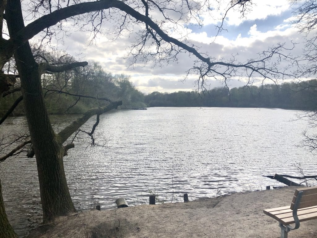 Spaziergang in Hamburg - Blick über den Bramfelder See in Hamburg