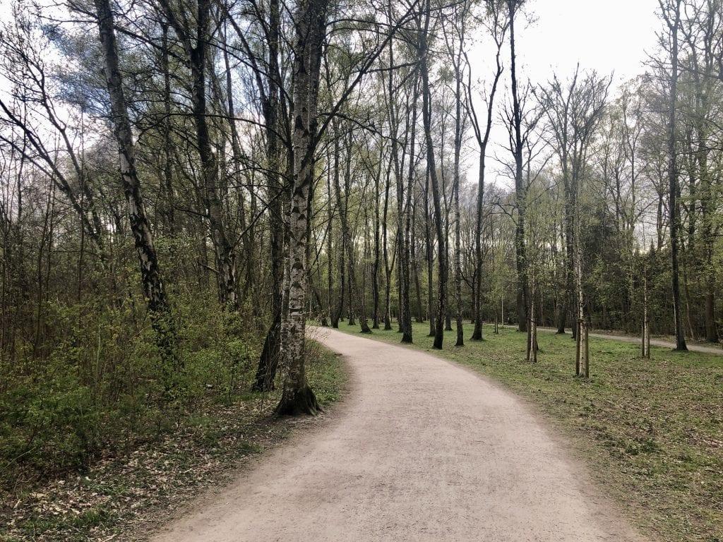 Der nördliche Uferweg am Bramfelder See