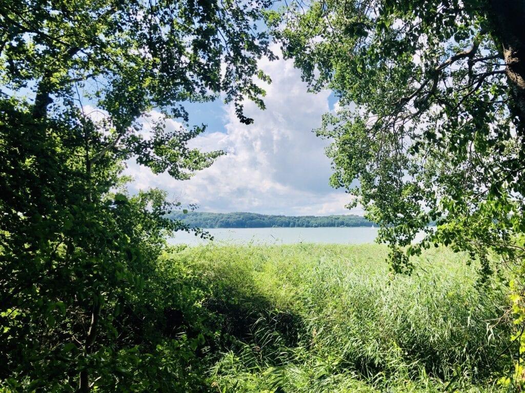 Blick vom Fahrradweg über den Ratzeburger See