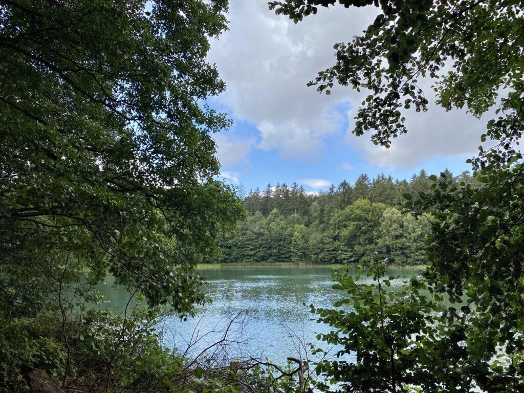 Blick über den Gartensee beim wandern am Salemer Moor
