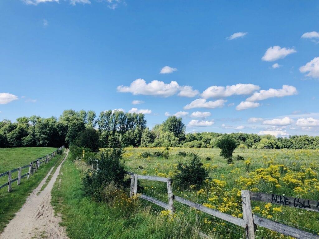 Der Radweg an der Aue der Wakenitz südlich von Lübeck