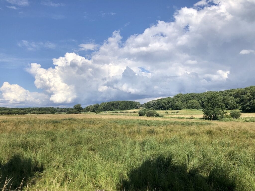 Landschaft an der Wakenitz bei Rothenhusen