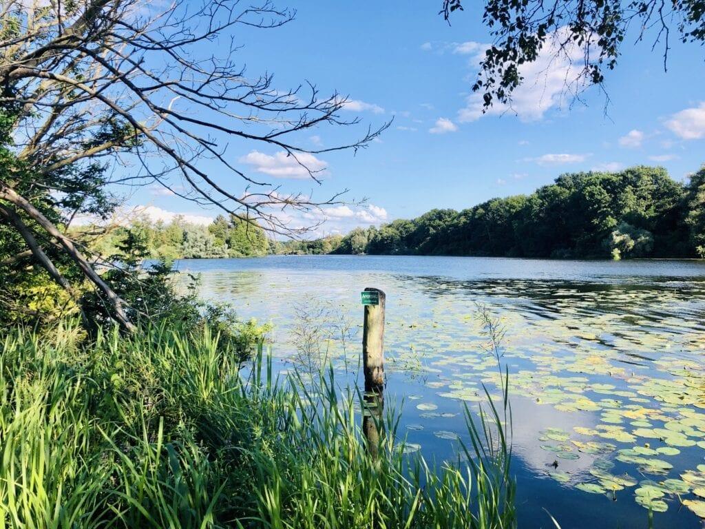 Fahrradtour von Mölln nach Lübeck - Am idyllischen Ufer der Wakenitz in Lübeck