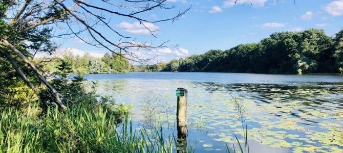 Fahrradtour von Mölln nach Lübeck – An den Ratzeburger See und entlang der Wakenitz