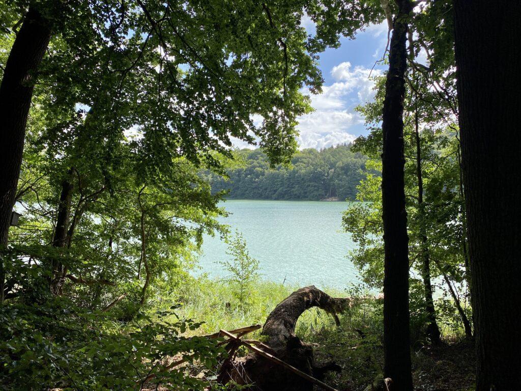 Wanderung in Schleswig-Holstein - Blick über den Garrensee im Naturschutzgebiet Salemer Moor