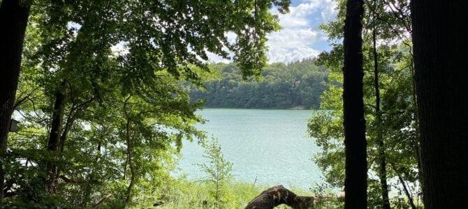Wanderung in Schleswig-Holstein: Ins urige Salemer Moor und zum  Garrensee