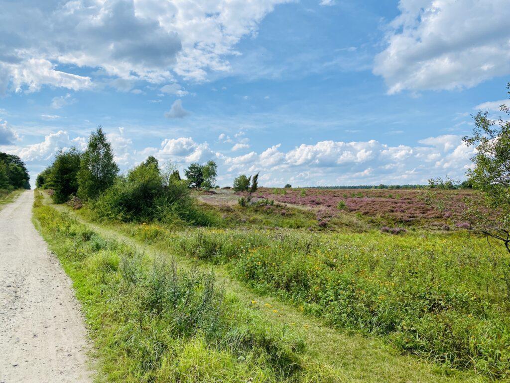 Fahrradtour durch die Lüneburger Heide - am Feldweg bei Hanstedt