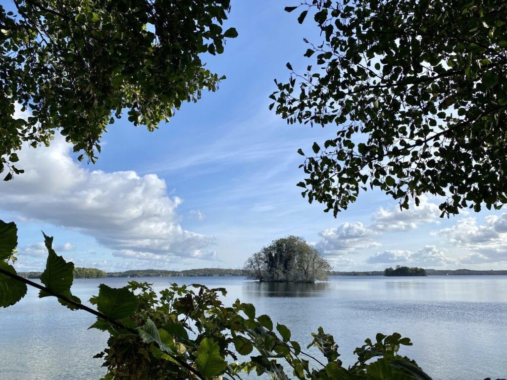 Blick zur Insel Sterin im Großen Plöner See
