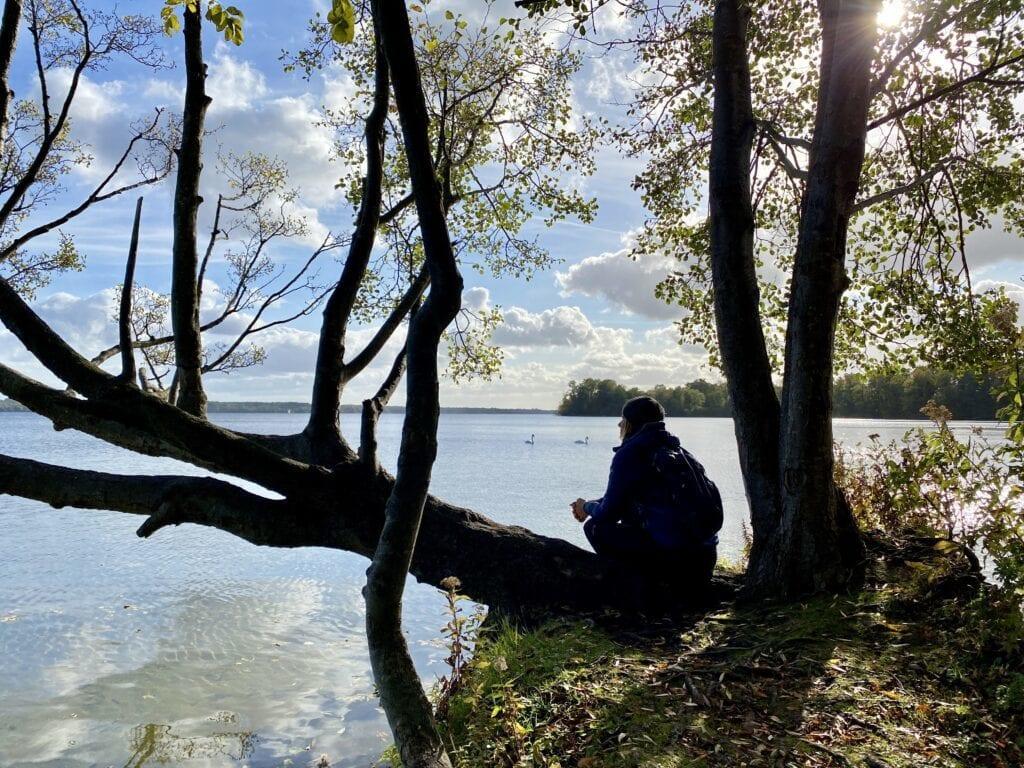 Ein verstecktes Fleckchen: Am Ufer des Großen Plöner Sees - gegenüber die Prinzeninsel