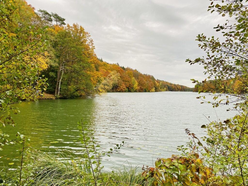 Herbstliche Idylle am Schmalsee in Schleswig-Holstein