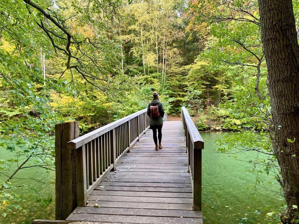 Holzbrücke über den Hellbach zum anderen Ufer des Schmalsees