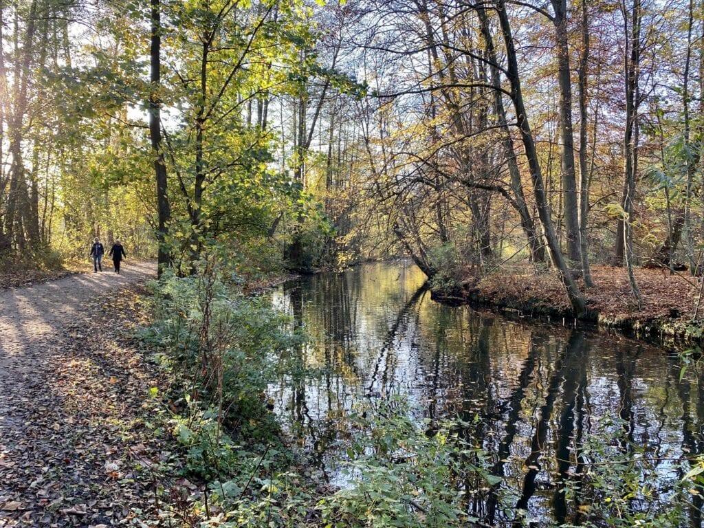 Wandern am Alsterlauf in Hamburg - Herbstliche Idylle