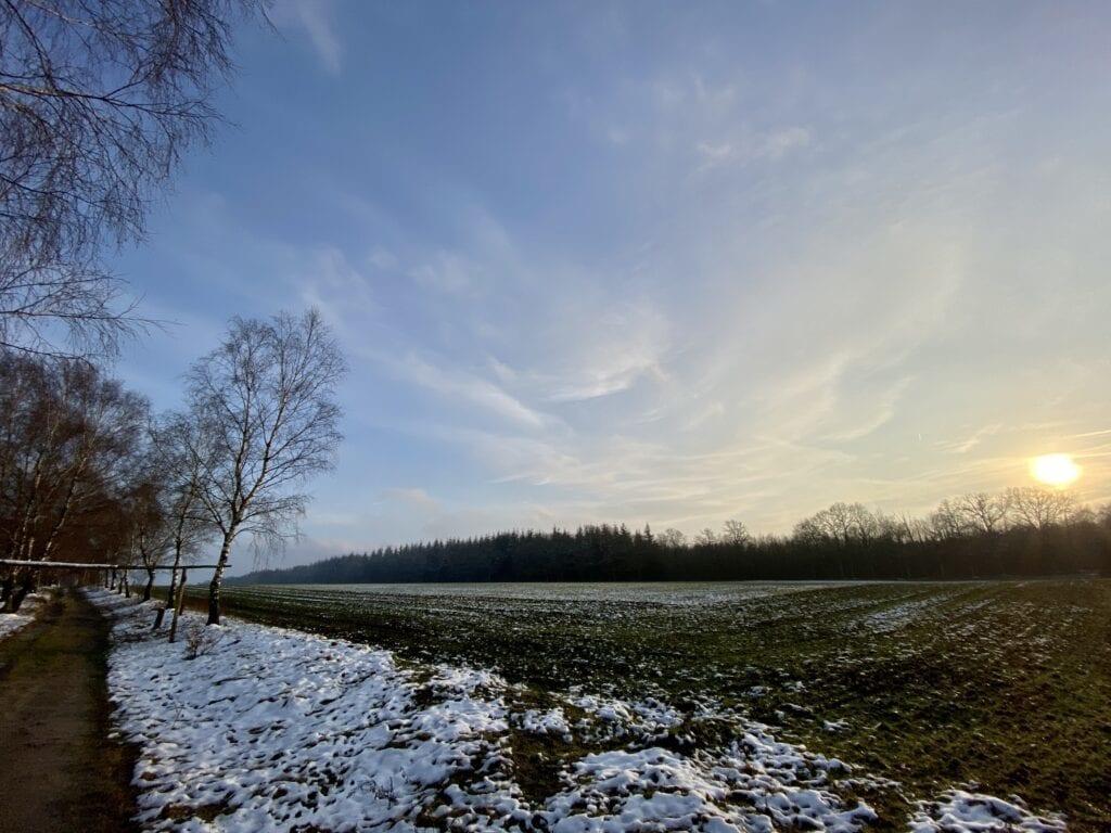 Auf der Birkenallee bei Tütsberg in der Lüneburger Heide