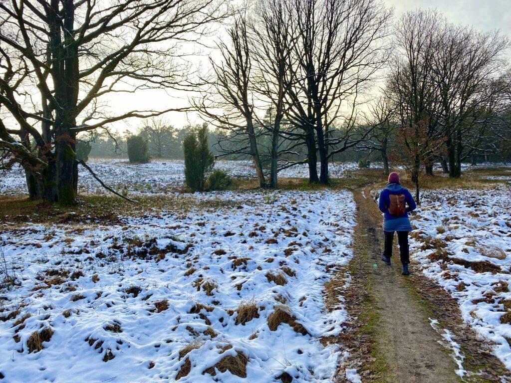 Winterliche Rundwanderung in der Lüneburger Heide ab Oberhaverbeck