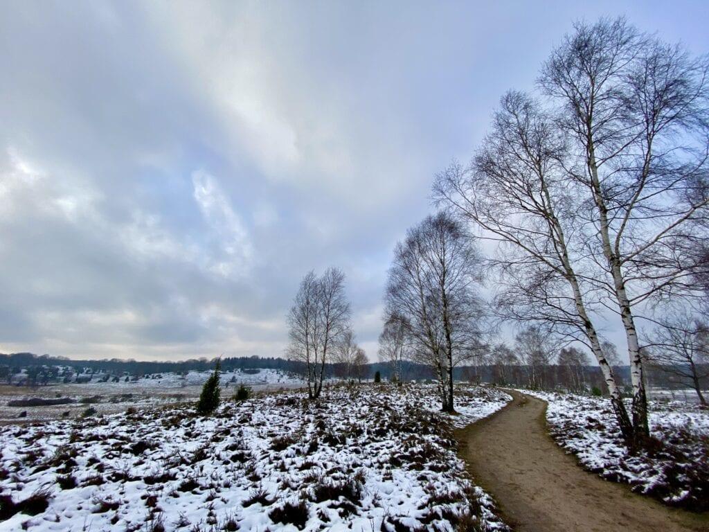Wanderweg südlich von Oberhaverbeck