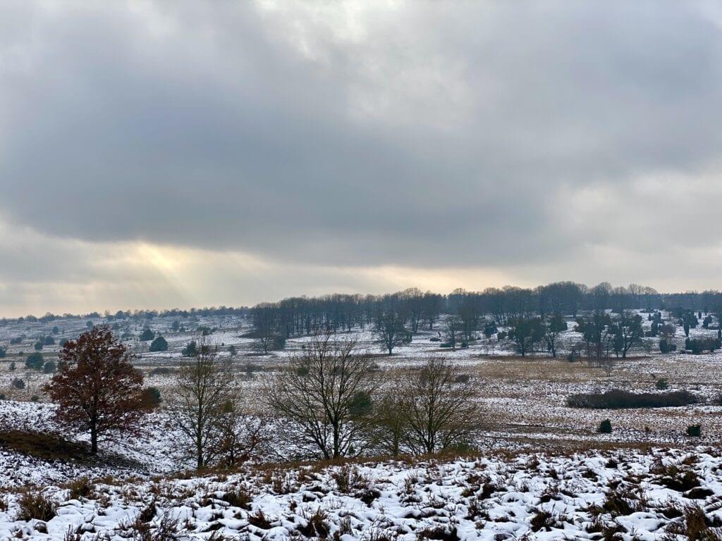 Winterliches Panorama auf der Rundwanderung durch die Lüneburger Heide