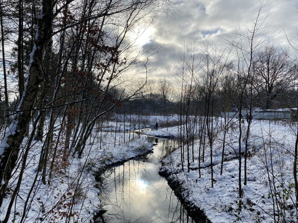 Wanderung an der Tarpenbek: Auf der Niendorfer Seite des Flughafens