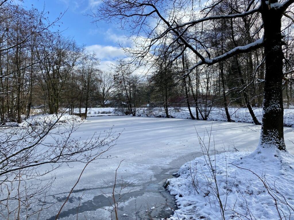Weiher an der winterlichen Tarpenbek in Hamburg-Langenhorn