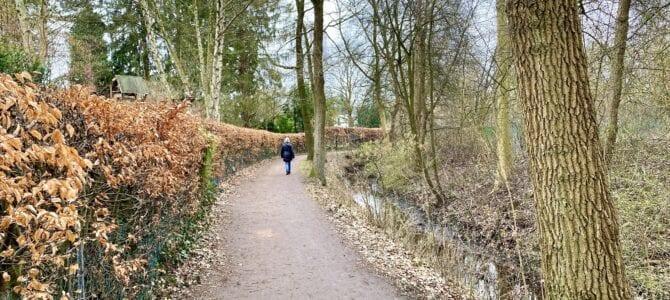 An der Kollau wandern: Von Hamburg-Niendorf nach Eppendorf