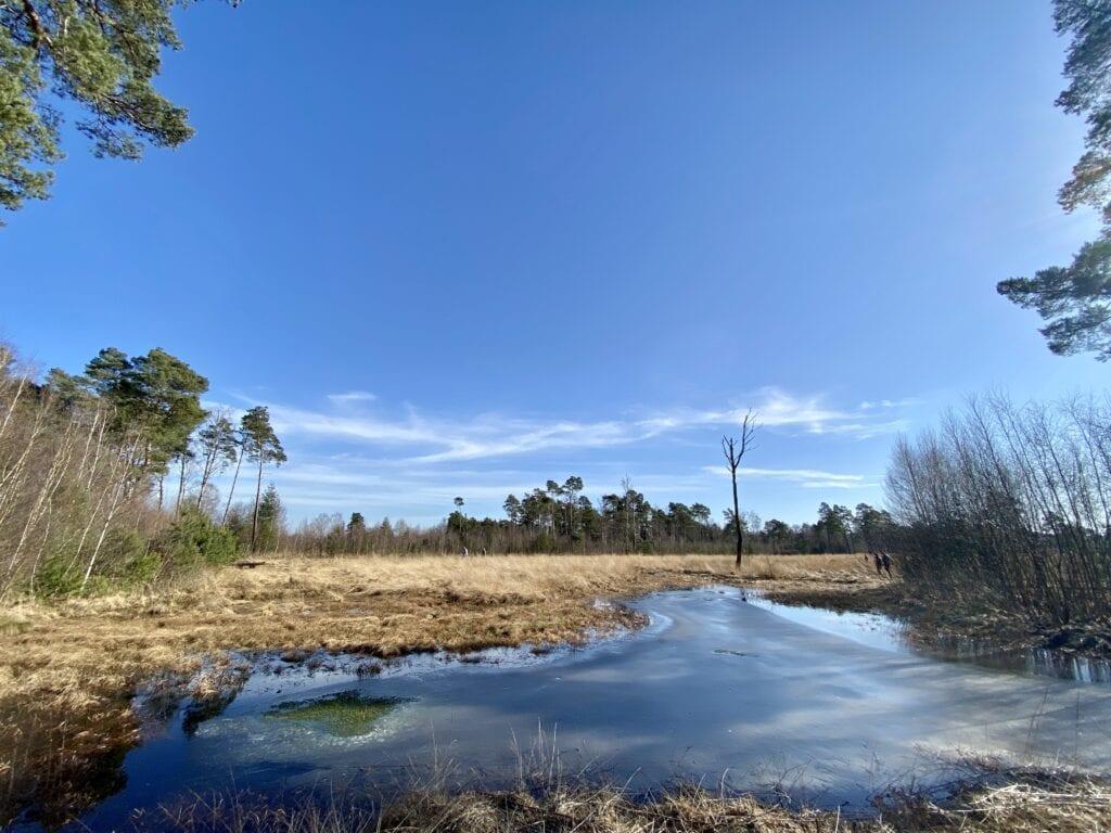 Landschaft im Bauernmoor bei Tiste / Sittensen