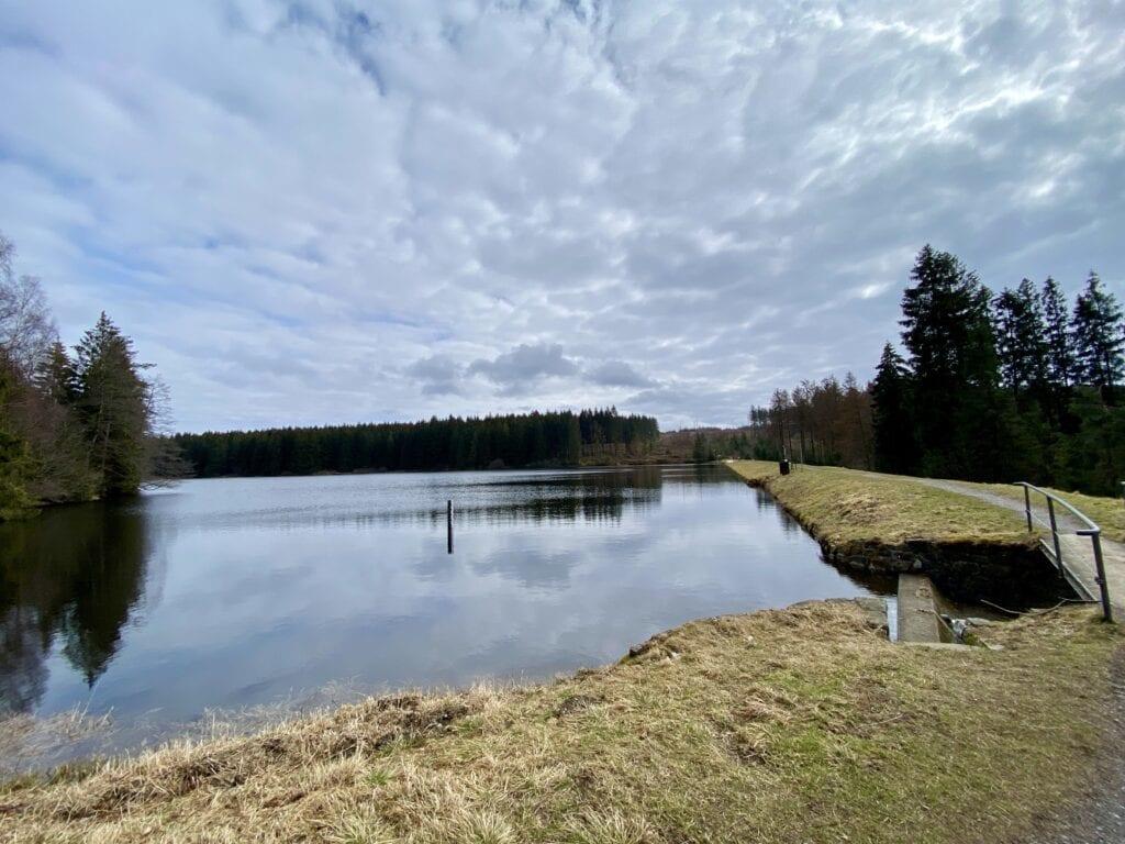Blick über den Oberen Nasserwieser Teich nahe der Innerstequelle