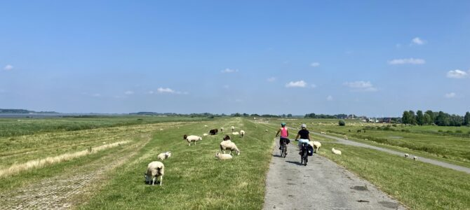 Radeln an der Elbe: Fahrradtour von Wedel nach Glückstadt