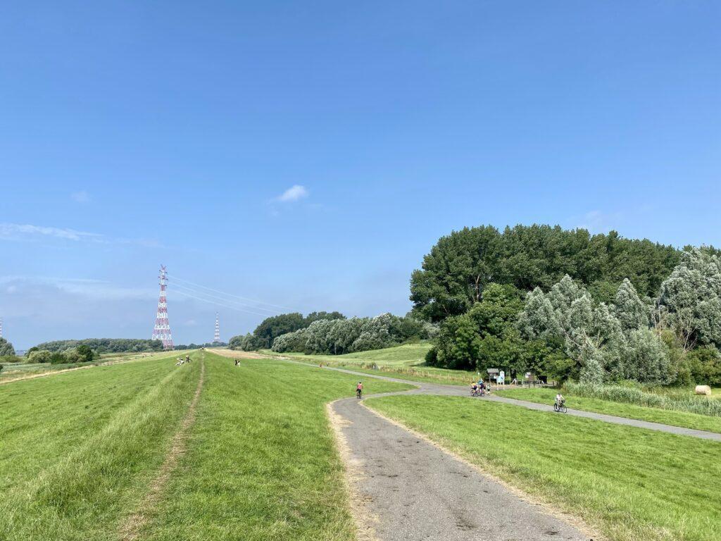 Auf dem Elberadweg zwischen Wedel und Glückstadt - Fahrradtour