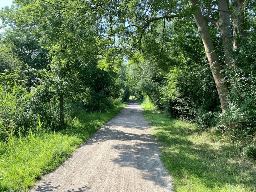 Fahrradweg in Richtung Elbdeich in Wedel